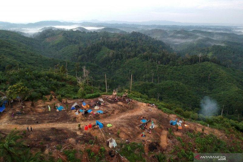 Ekowisata Penyangga Taman Nasional Bukit Tigapuluh Antara News