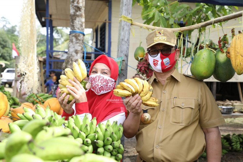 Temui Warga KM 56, Gubernur Serahkan Alat Pertanian