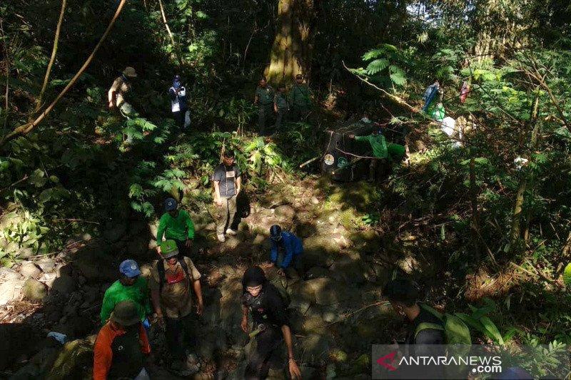 Macan tutul dilepasliarkan di Gunung Sawal, Ciamis