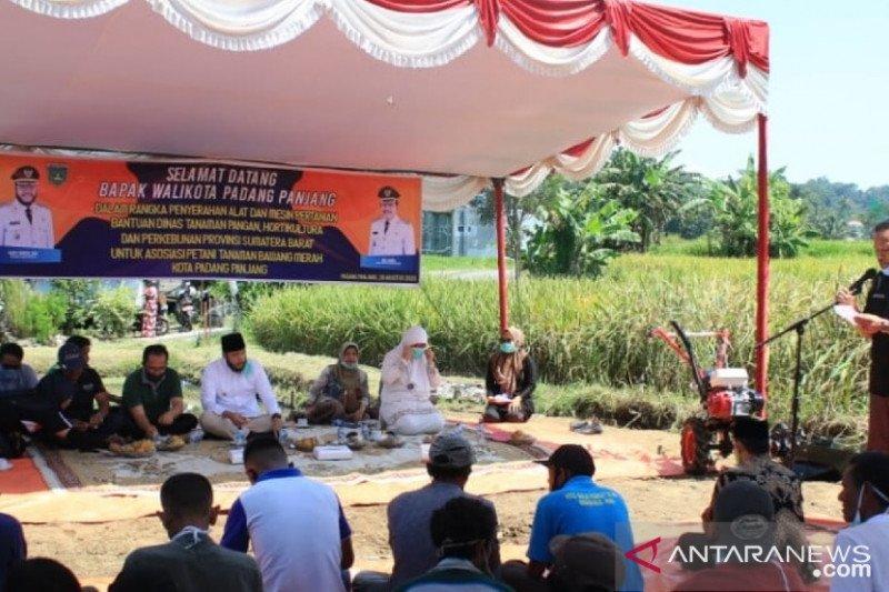 Petani bawang merah di Padang Panjang terima bantuan untuk tingkatkan produksi