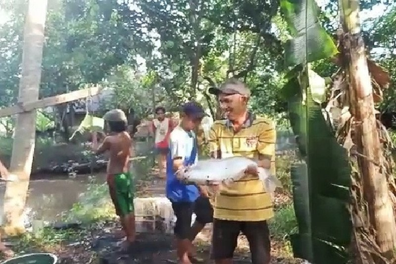 DPRD Kapuas dorong masyarakat budidayakan ikan patin