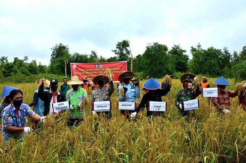 Rutan Kapuas garap lahan tidur menjadi produktif di bidang pertanian