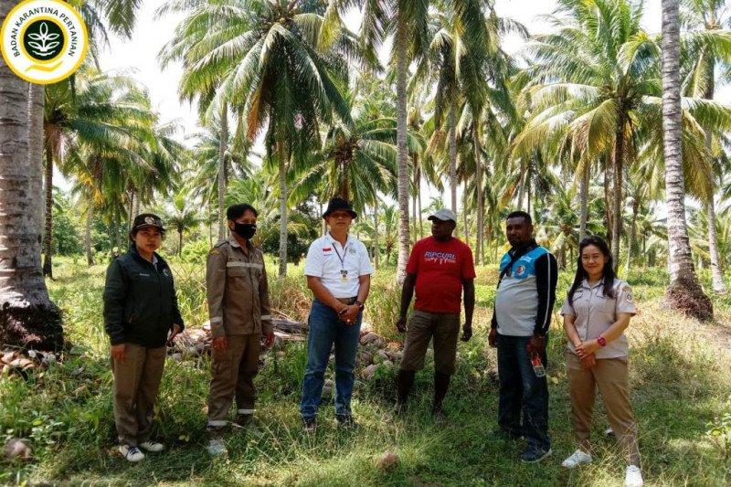 Karantina Pertanian dorong Kampung Makaling menjadi Desa Gratieks