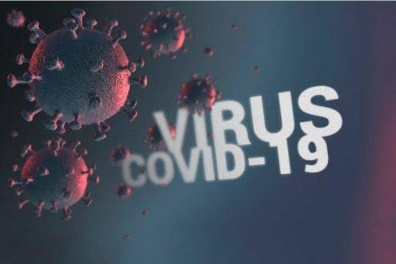 Pasien sembuh COVID di Palangka Raya 786 orang