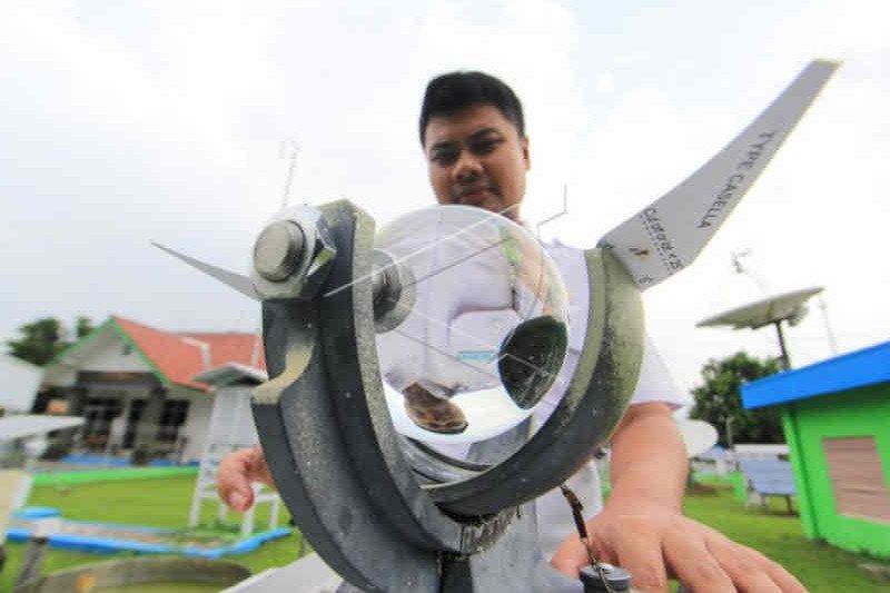 BMKG prakirakan kecepatan angin di wilayah Cirebon 56 km/jam
