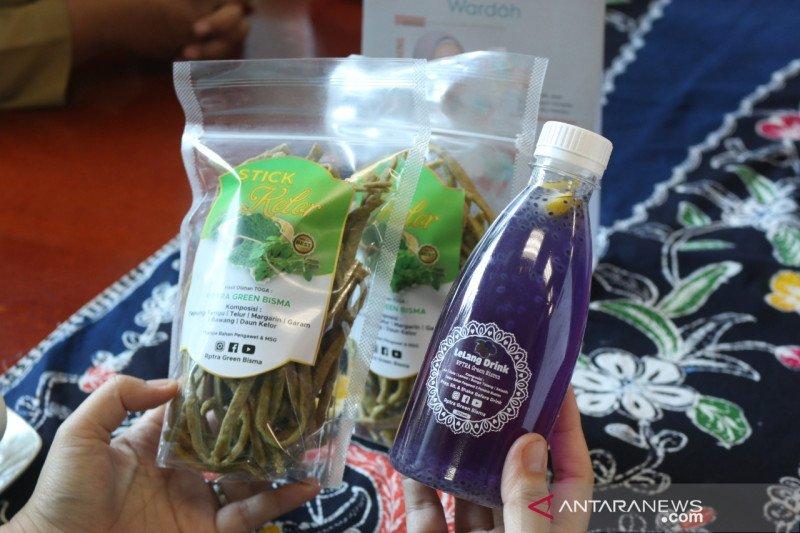 RPTRA di Jakut olah daun kelor menjadi produk bernilai jual