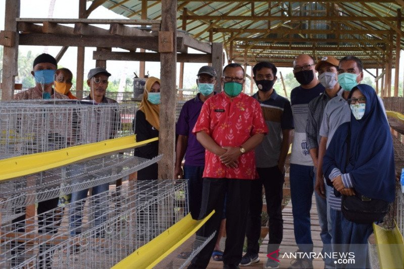 WVI inisiasi perluasan kemitraan peternak ayam di Palu dan Sigi