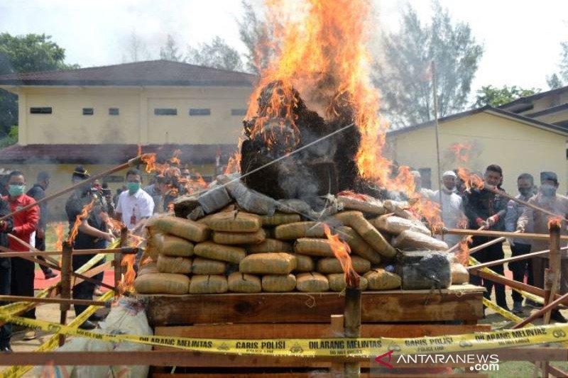 Pemusnahan Narkotika Di Aceh