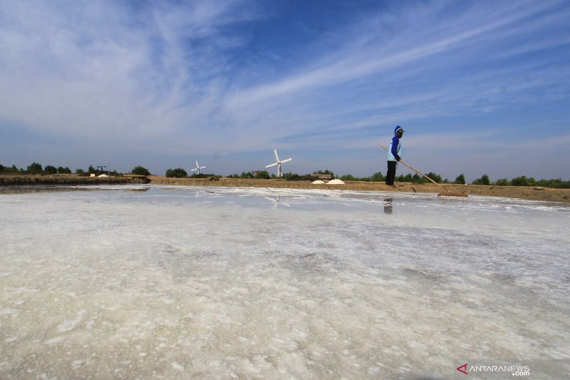 Presiden Jokowi catat dua masalah utama dalam industri garam rakyat