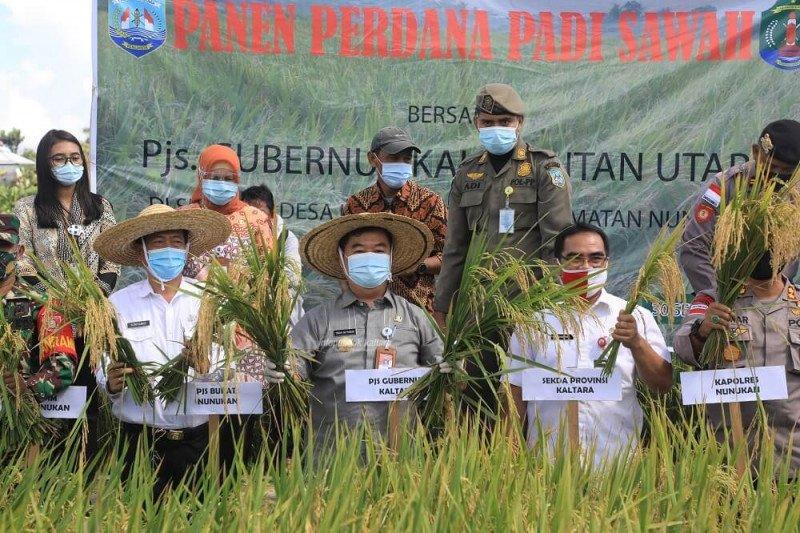 Di Nunukan, Pjs Gubernur Serahkan Bantuan saat Panen Padi Perdana
