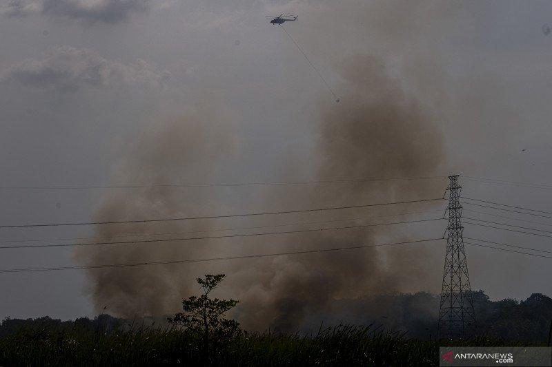 Kebakaran Lahan Di Tanjung Barangan