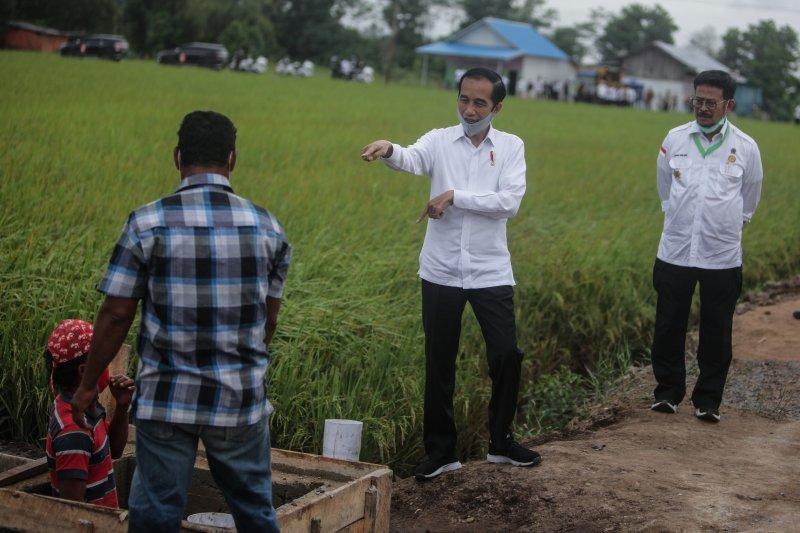 """Presiden Jokowi: Air melimpah di """"food estate"""" Kalteng untuk budidaya ikan"""