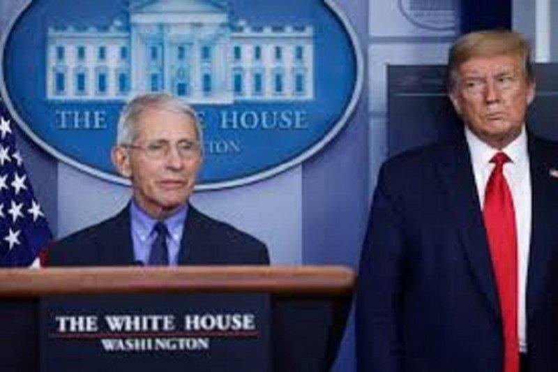Dr. Fauci sebut obat antibodi Regeneron bantu kesehatan Trump