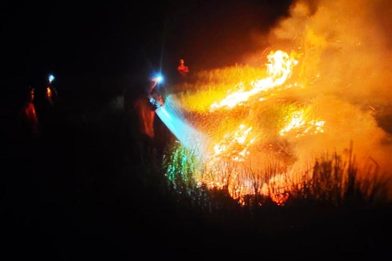 Kebakaran lahan hanguskan 10 hektare lahan di Kecamatan Kapuas Murung