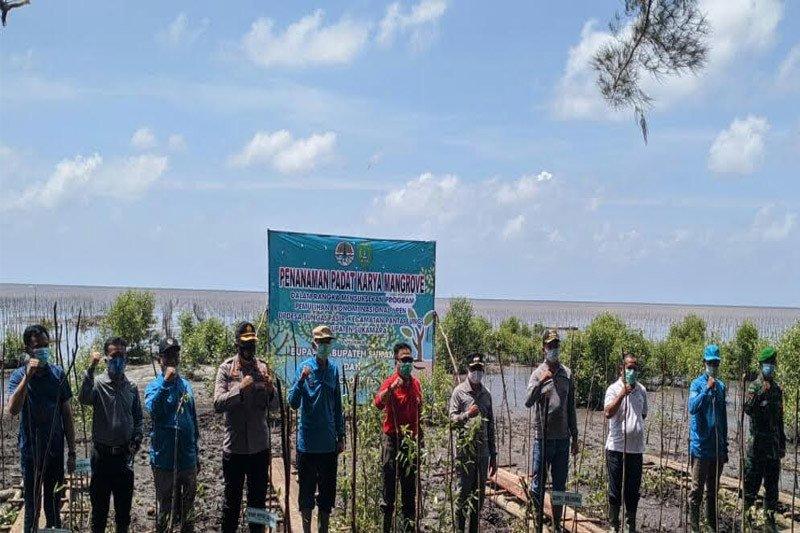 Pemkab Sukamara beri perhatian serius dalam menjaga hutan Mangrove