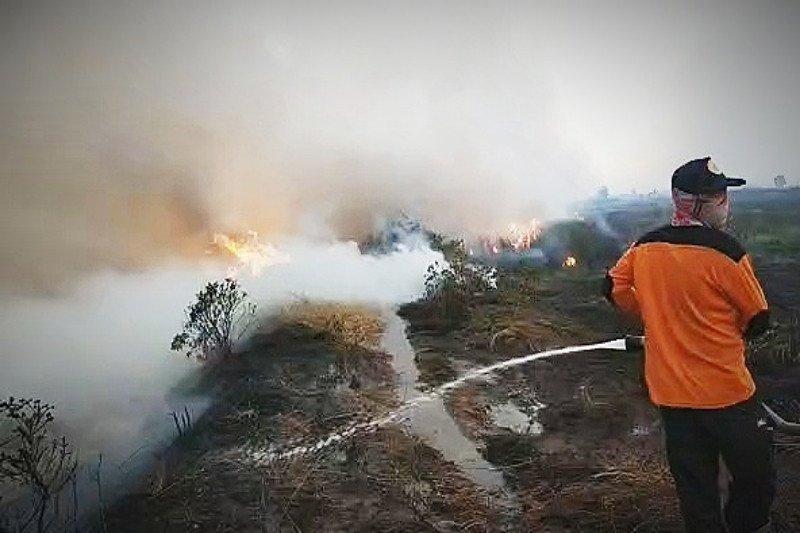Karhutla di Kapuas Murung rambah tiga desa