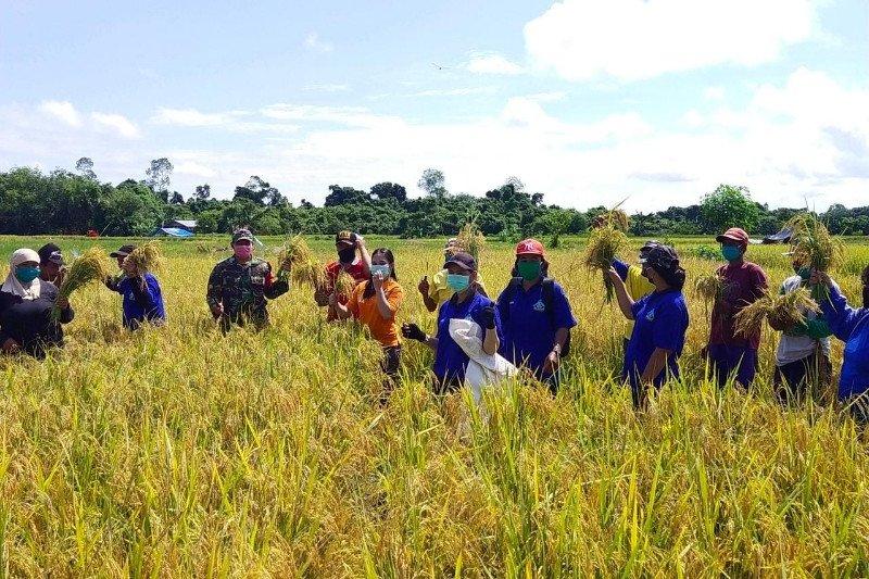 Program Sambang Petani dorong penguatan ketahanan pangan Bartim