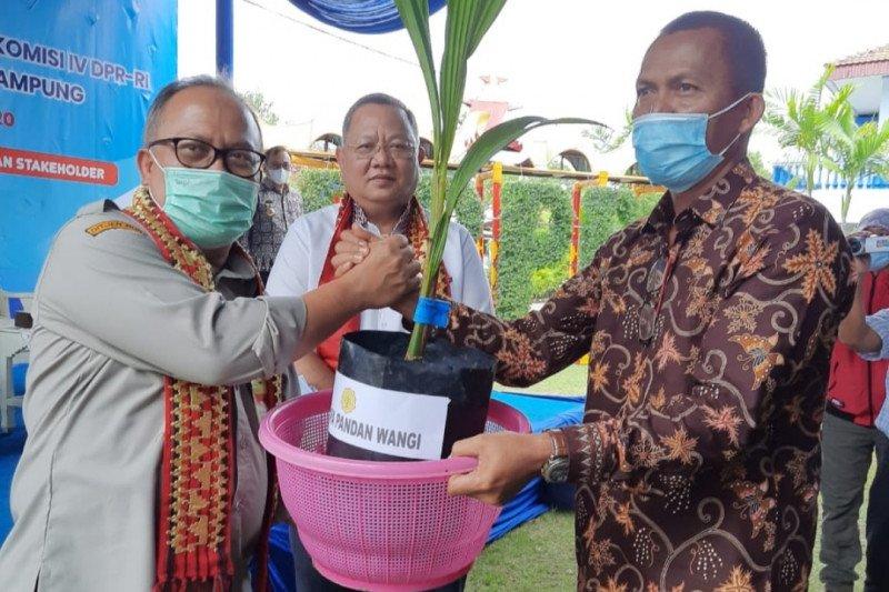 Kementan apresiasi BUMD serap hasil kakao petani Lampung