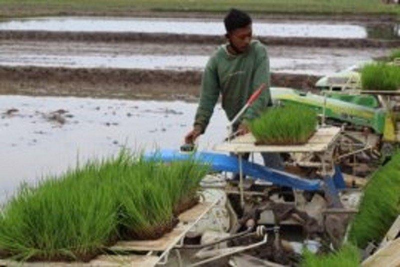 Hari pangan, konsep korporasi harus libatkan petani  sebagai subjek