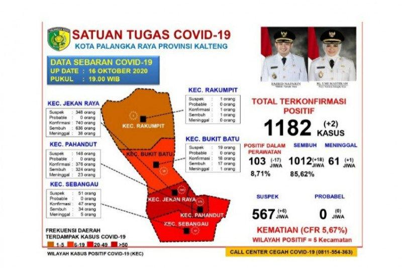Kasus sembuh COVID-19 di Palangka Raya mencapai 1.012 orang