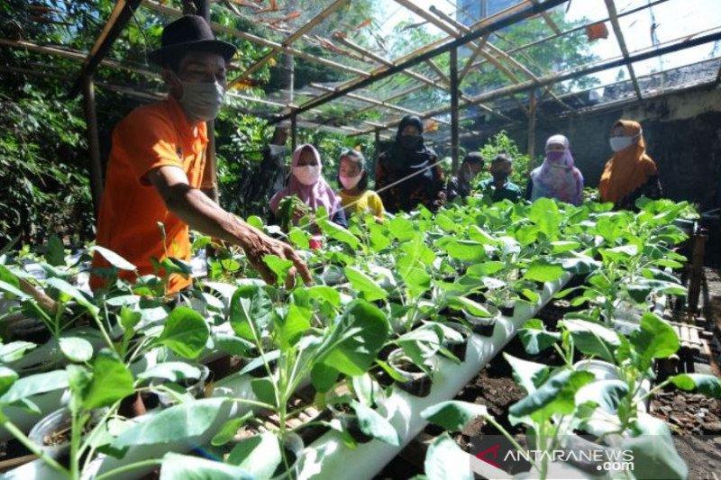 Edukasi Pertanian dan Perikanan Siswa SD