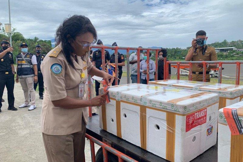 KKP dukung ekspor perdana kepiting bakau hidup dari pengusaha Papua