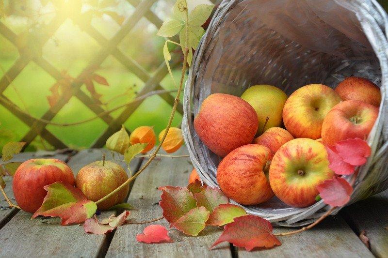 Tips kesehatan: Cara lezat untuk turunkan tekanan darah tinggi