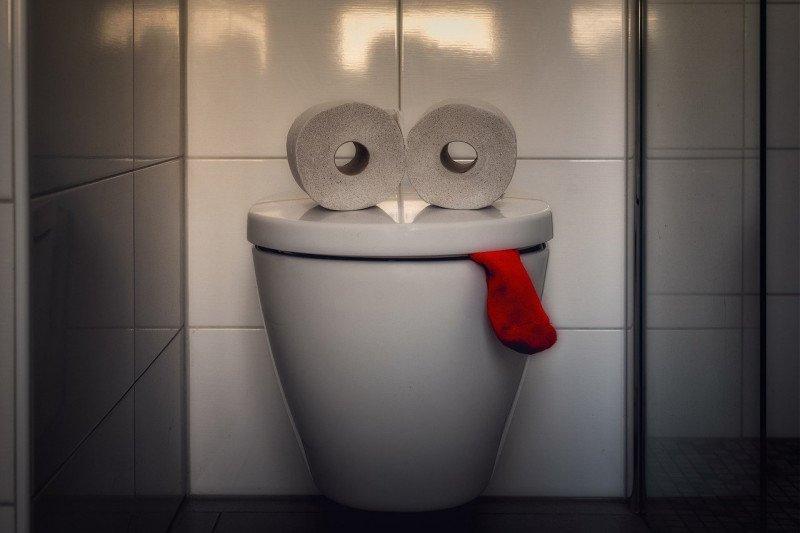 Terlalu lama BAB di WC duduk bisa sebabkan wasir