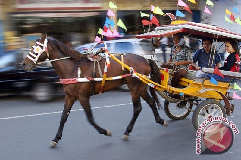 Tingkatkan pendapatan, Lumentut dorong alat angkut tradisional bendi sokong pariwisata Tomohon