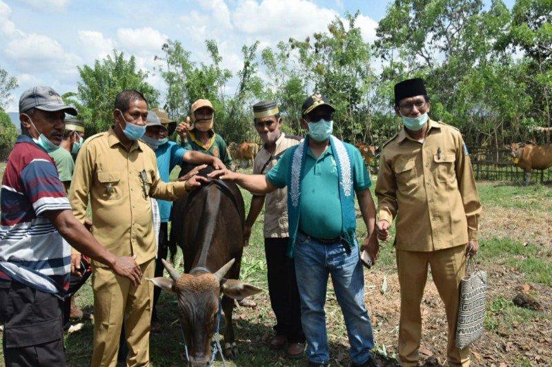 Kunjungi Dompu, Plt Gubernur Kalteng sebut pertanian mampu topang ekonomi masyarakat