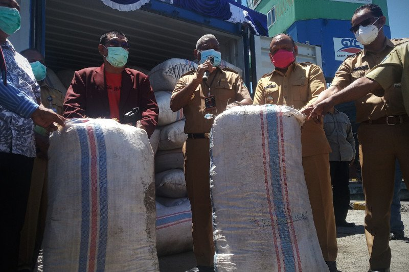 Petani Teluk Wondama mulai kirim rumput laut ke Surabaya