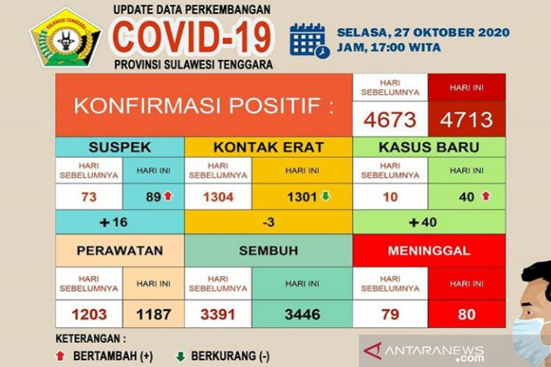 3.446 dari 4.713 pasien COVID-19 di Sultra dinyatakan sembuh