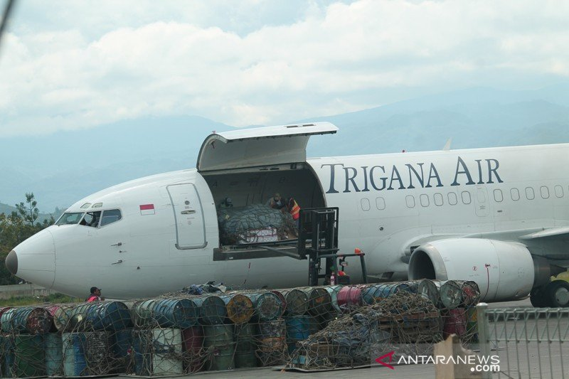 Jalan Trans Papua belum menjadi ancaman bagi penerbangan kargo