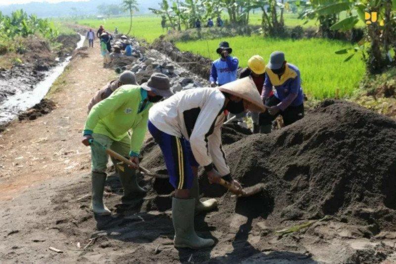 NTT targetkan padat karya pertanian serap 1.505 tenaga kerja