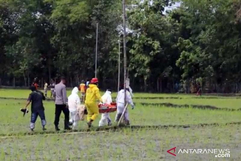 Jamino korban tewas ke-9 akibat tersengat listrik jebakan tikus di sawah