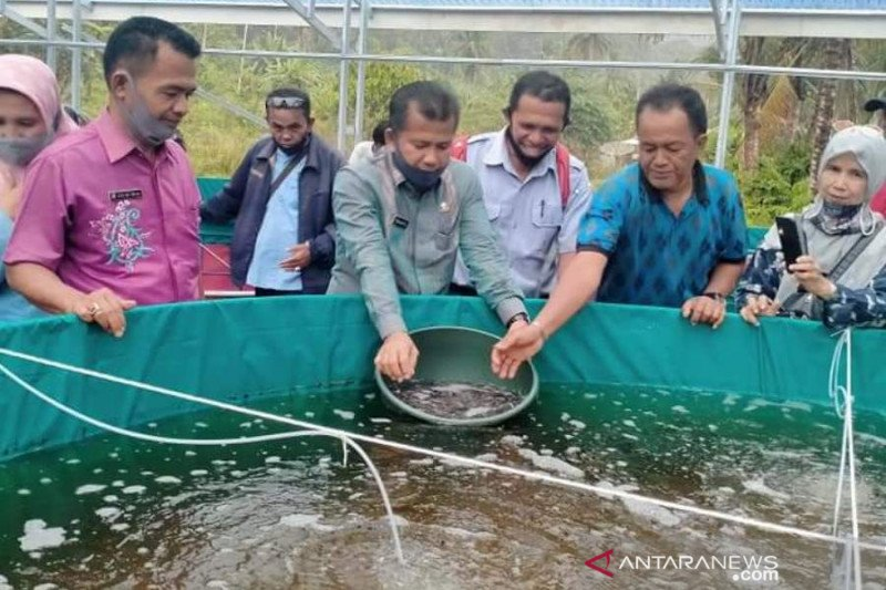 Two fish cultivator groups in Tanjungraya Agam received biofloc pond