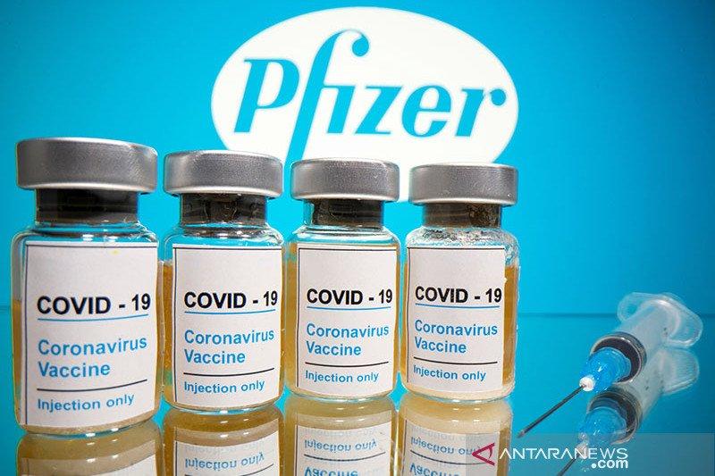 Pemerintah mempertimbangkan beli vaksin Pfizer