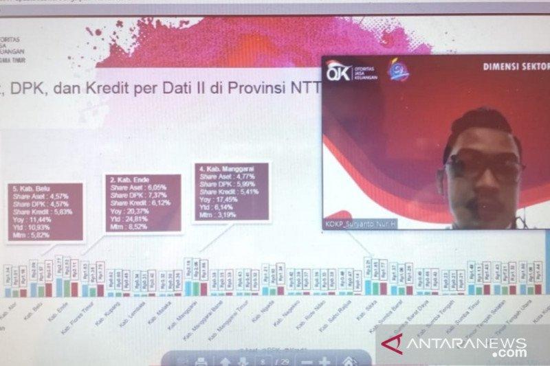 Penyaluran kredit konsumsi  NTT capai Rp20,36 triliun