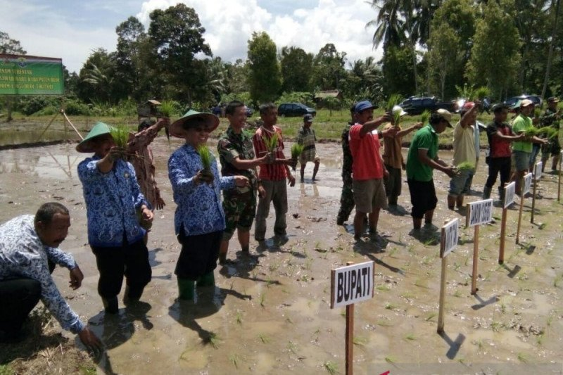 Pemkab Buol  gencar bangun sarana pertanian dukung petani olah lahan
