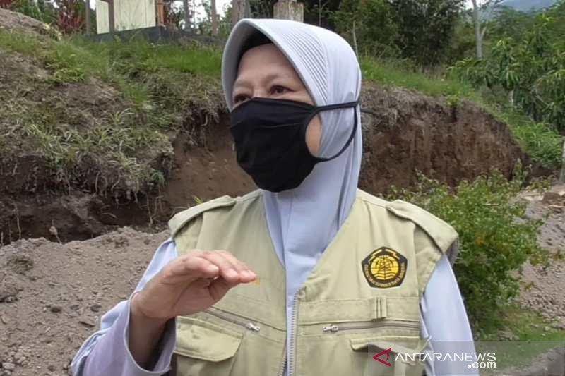 BPPTKG sebut aktivitas vulkanik Gunung Merapi cenderung stabil