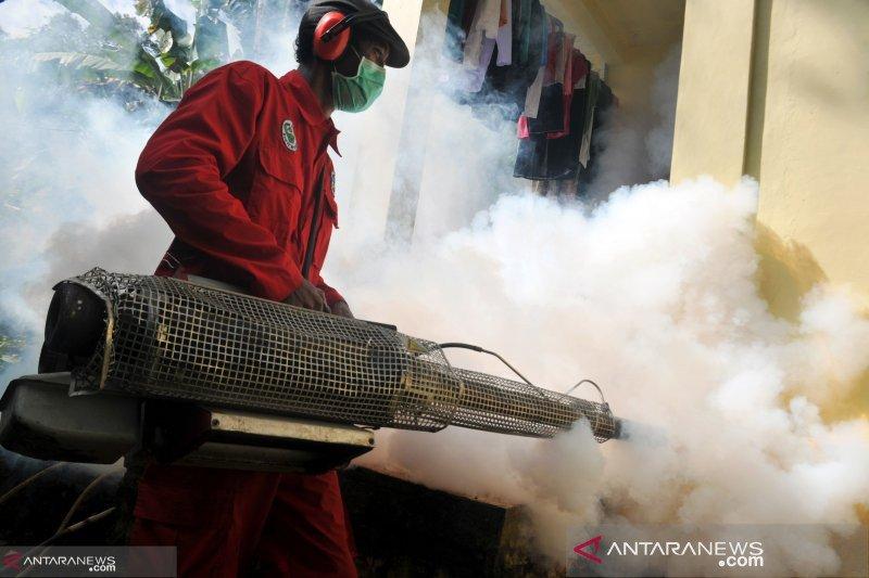 Tiga pasien DBD Pekanbaru meninggal, warga diimbau waspadai musim penghujan