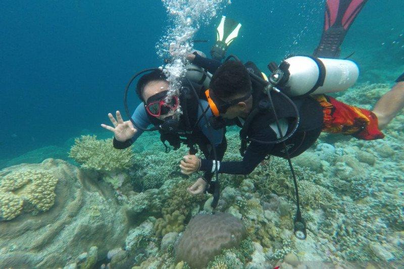 Wamendes PDTT optimistis kawasan Wakatobi bisa jadi destinasi wisata unggulan
