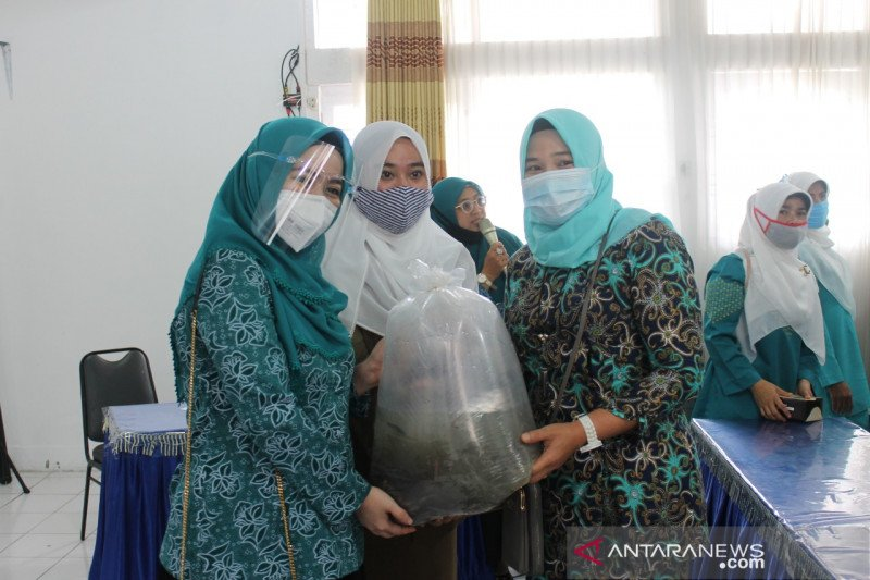 Dasawisma Padang Panjang salurkan bibit ikan lele