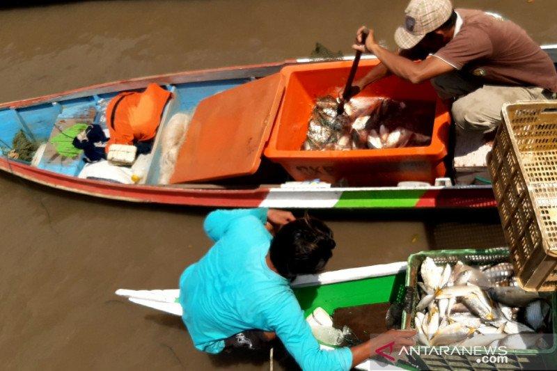 Kaltara kucurkan Rp19,5 Miliar untuk sektor perikanan-kelautan