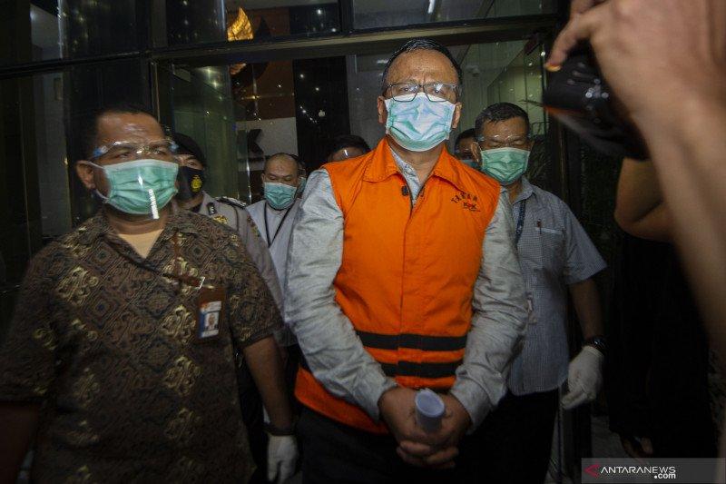 """Benih lobster menjadi """"tsunami"""" politik Prabowo dan Jokowi"""