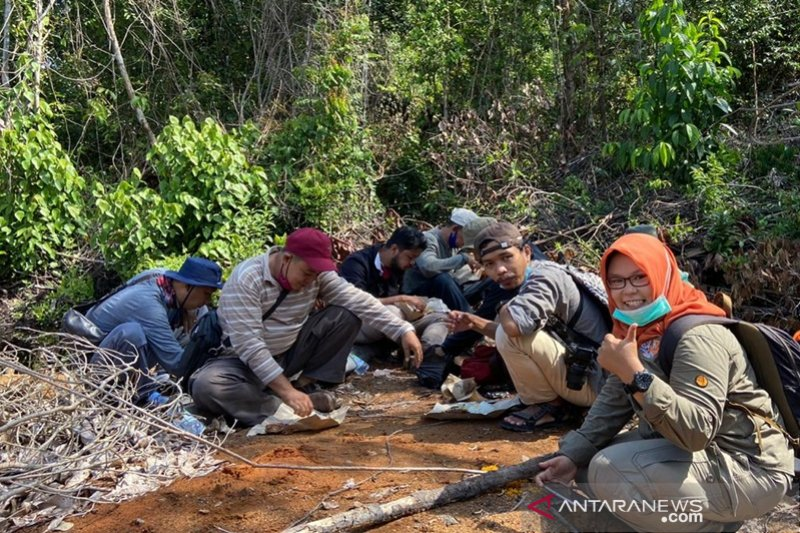 Journey to save South Kalimantan orangutan quite long: SBI