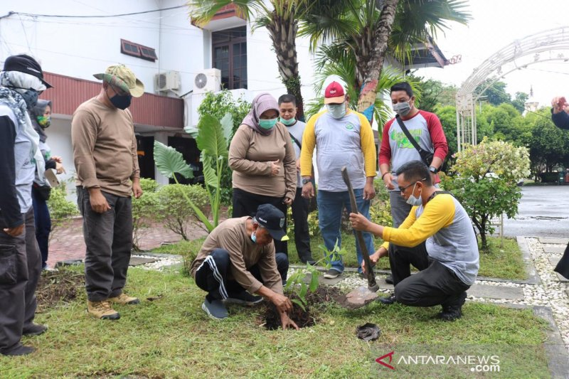 Banjar Regent plants bungur tree in the pavilion yard