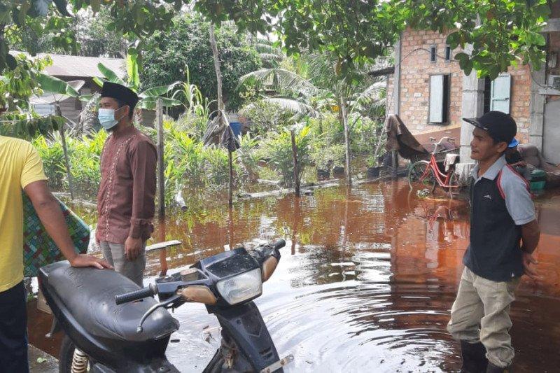 Puluhan rumah terendam banjir di Kecamatan Bukit Batu Bengkalis