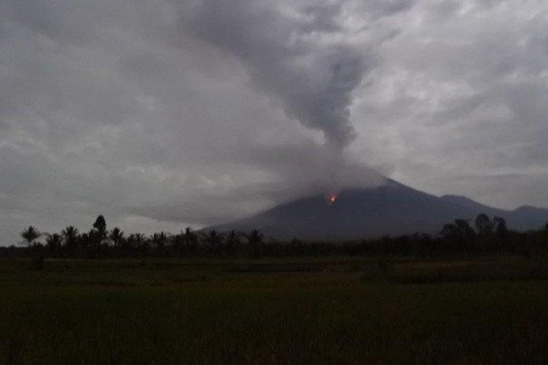 Guguran awan panas Semeru meluncur sejauh 3.000 meter