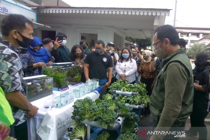 Wali Kota Bogor dukung warga kreatif kembangkan urban farming